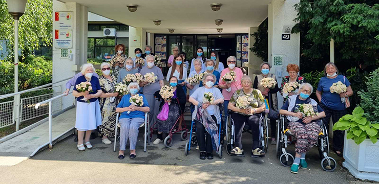 ROSES FROM ROYAL PALACE FOR OLD PEOPLE'S HOMES